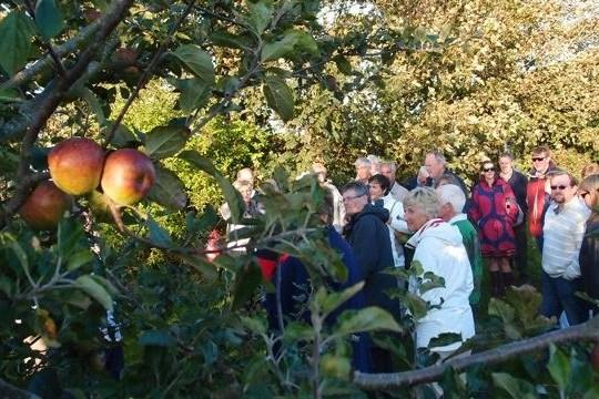 Cider Fields Tour with Gill Girard (September 2011) -