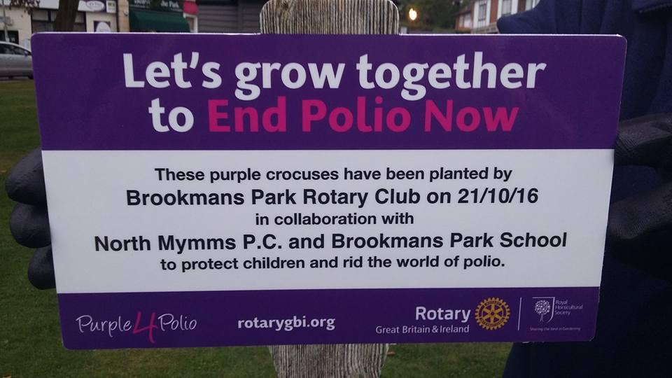 End Polio Now Day Plaque