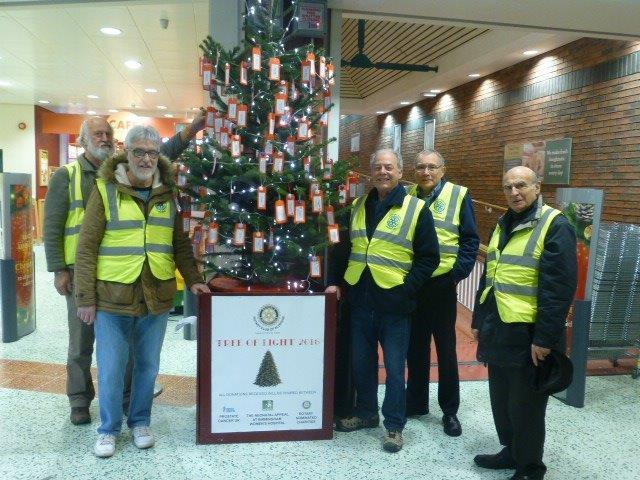 Tree of Light in Morrisons Aldridge