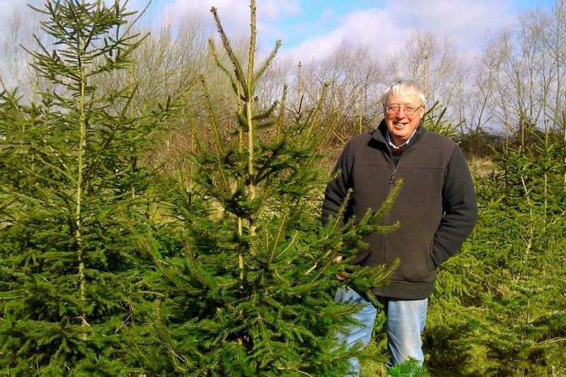 Rotarian Terry Williams on his Christmas Tree Plantation