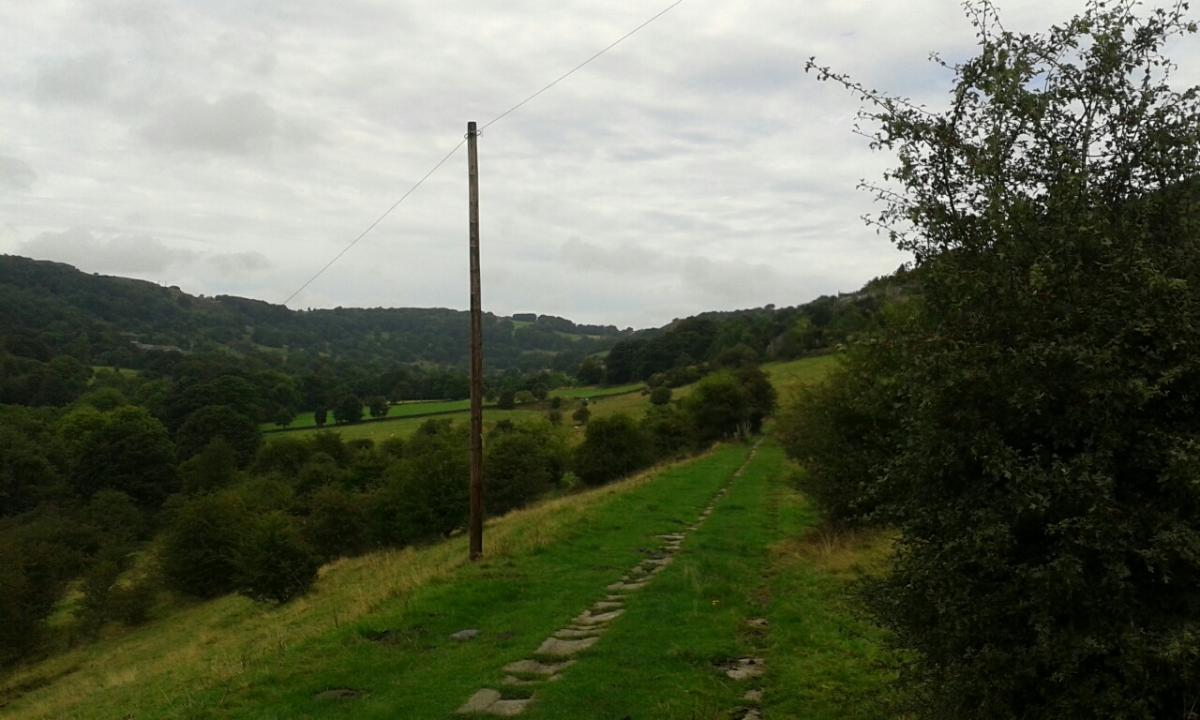 Walk and pub lunch - start 10:00 am  - Shibden Vale