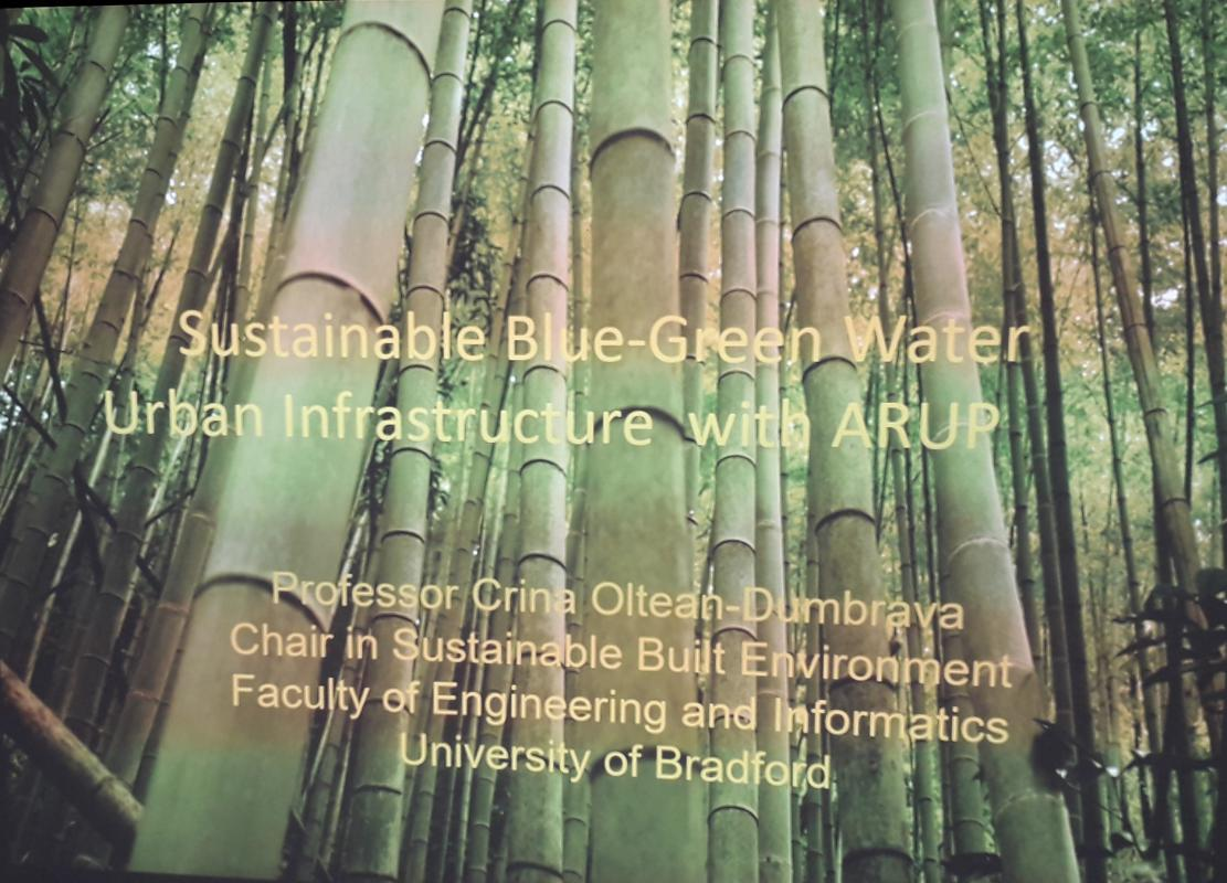 Think Blue Green for Sustainable Urban Infrastructure -