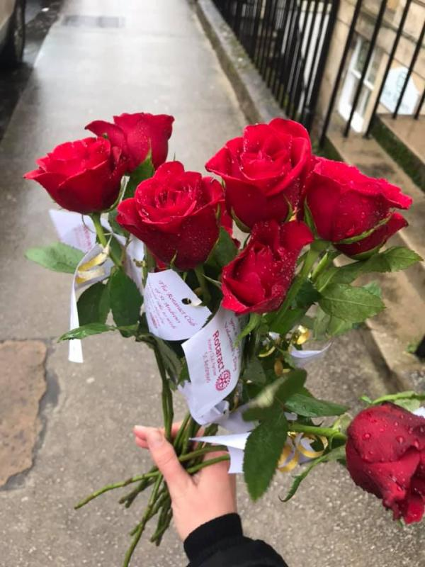 Valentines Day Roses -