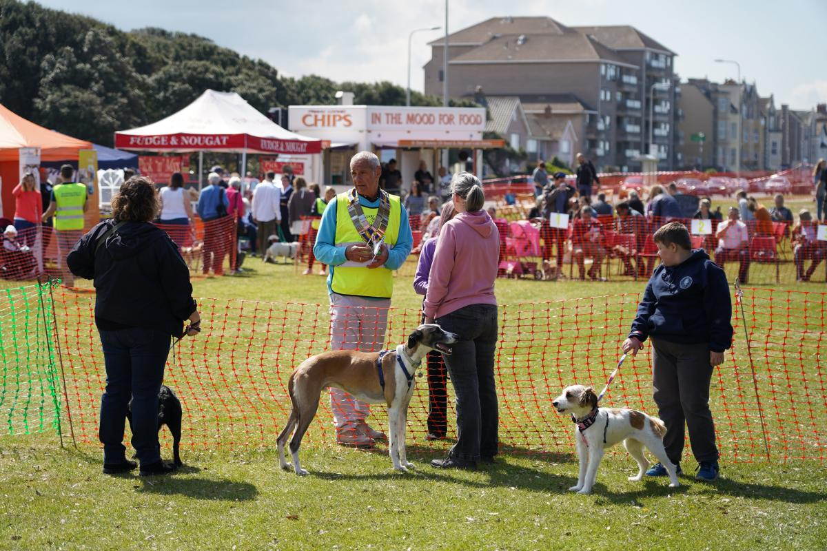 Our Annual Weston Rotary Dog Day attracts huge crowds on the Beach Lawns