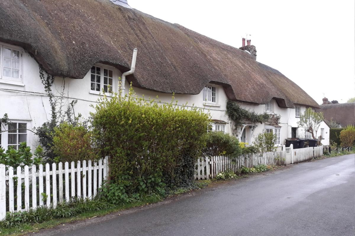 One of the many thatched cottages in the village of Briantspuddle