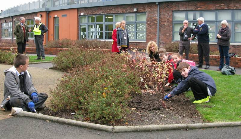Raising Awareness of Polio by Planting Crocus at Castle Douglas Primary School