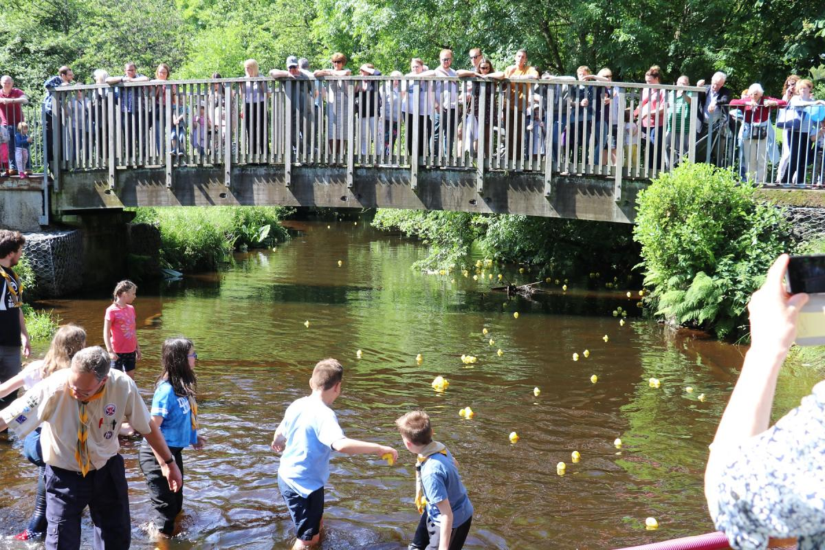 Duck Race 2017 - Finishing Line