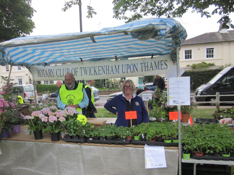 HANDS Fair on Twickenham Green 31 May 2016