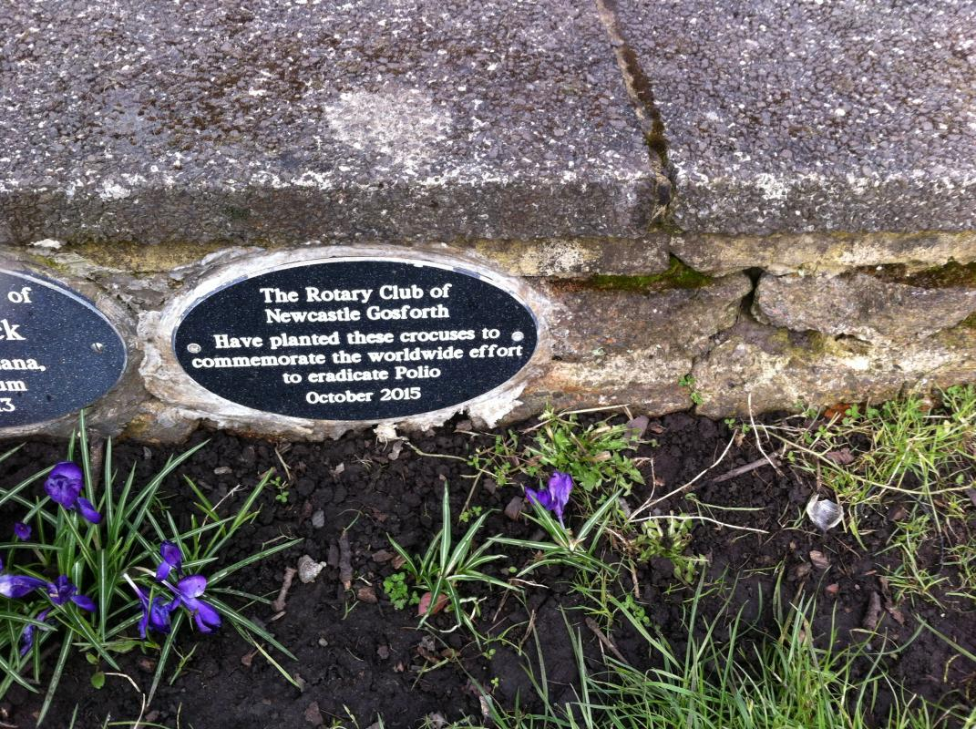 Planted in Gosforth Central Park