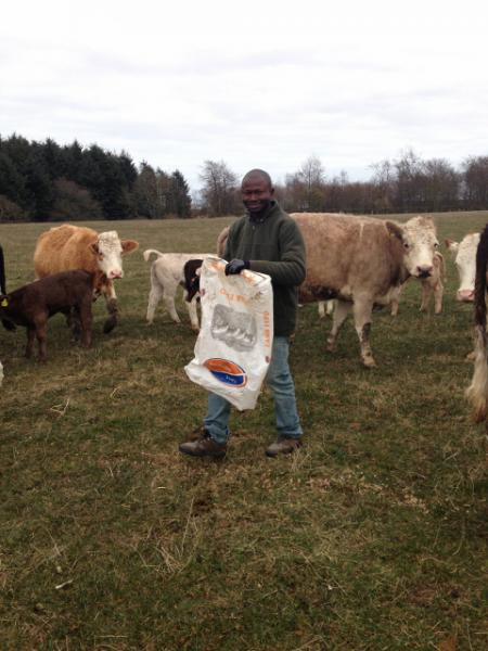 Denis Bannah from Sierra Leone visits Scottish farm - Denis on Colin's farm