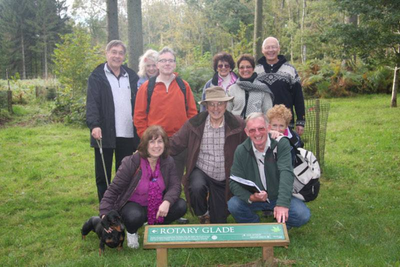 Westonbirt Walk - and Thorold led his group to see the Autumn Colours. The leaves were amazing in the winter sunshine.