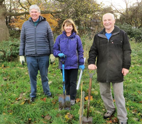 Tree planting at Sudley Estate, November 2018 - Rotary club members planting trees at Sudley Estate, November 2018