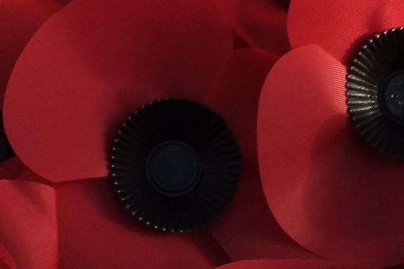 REMEMBRANCE DAY PARADE AND WREATH LAYING. LYNDHURST -