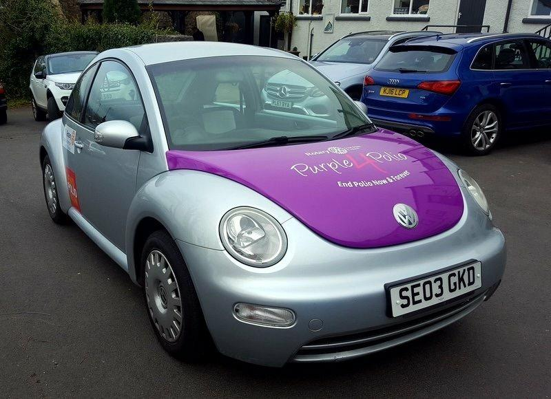 The Beetle takes shape - The Beetle in Purple