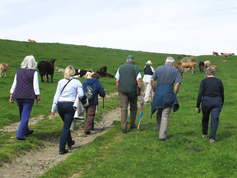 PHIL'S WALK  SUNDAY 8th JUNE 2014 -