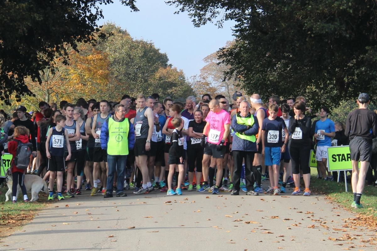 2016 Rotary Blenheim Run - Click for slideshow - Runners line up for the start in beautiful autumn sunshine...