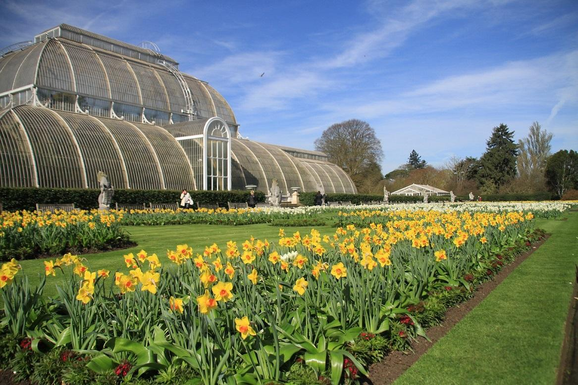 Club Visit to Kew Gardens - A beautiful day for our tour of Kew Gardens
