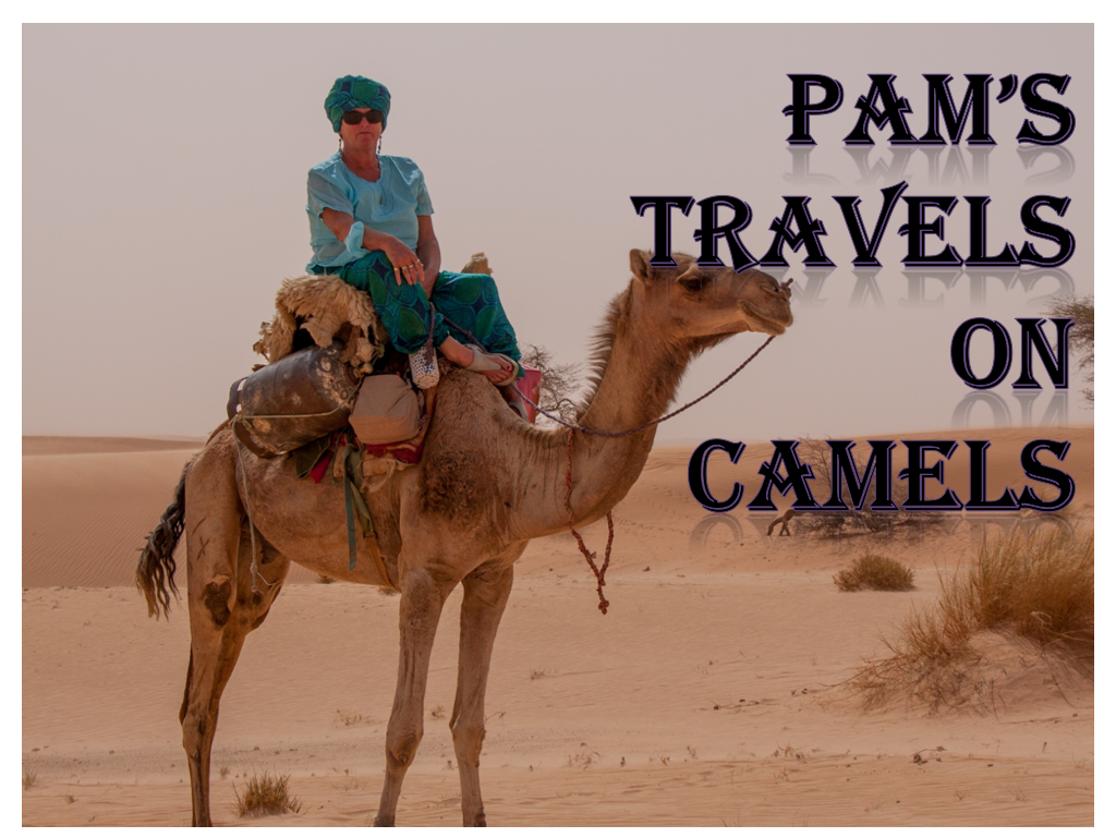 Pam on a Camel