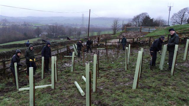 Tree Planting Cold Well Farm, Wilsden