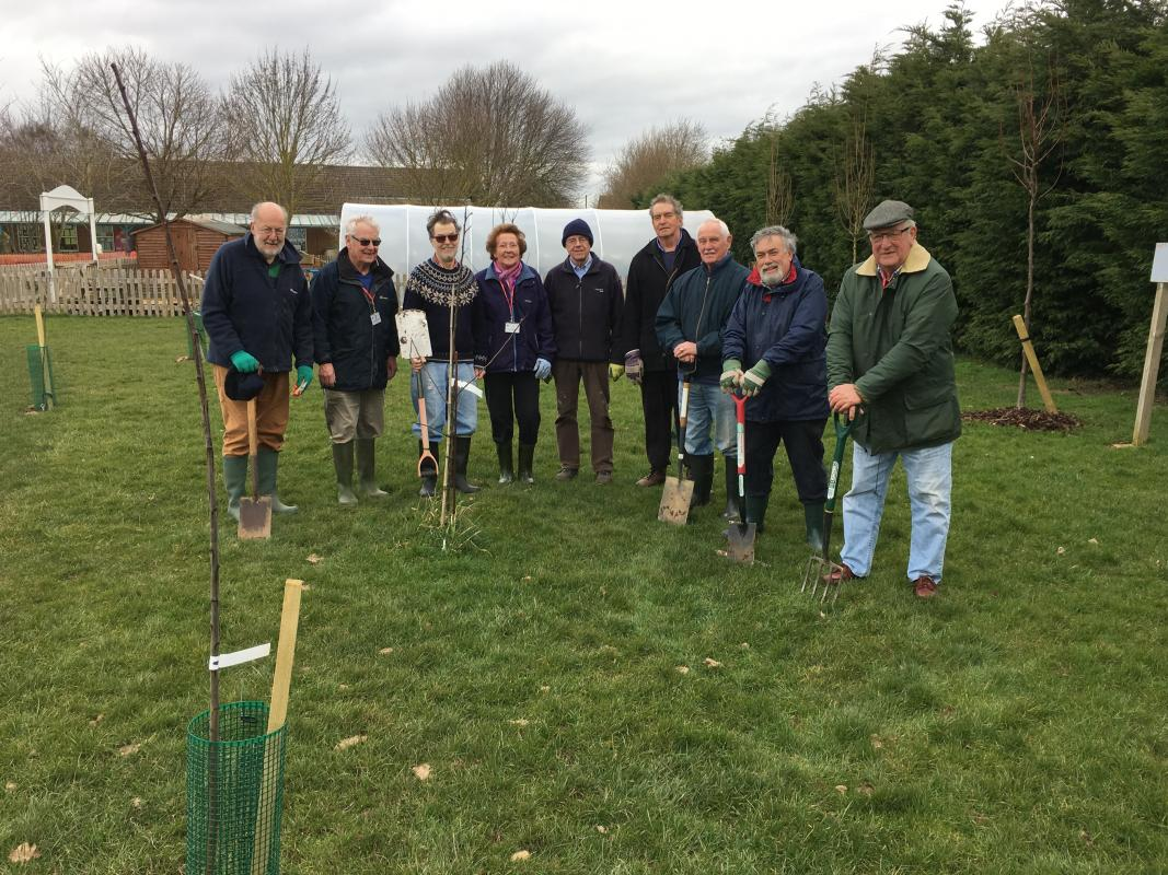 Rotary Members planting tree at Ashleigh School, Wymondham