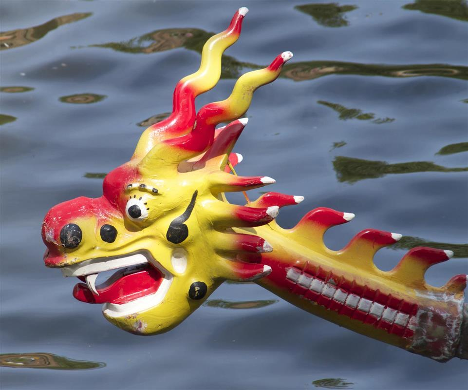 York Rotary Dragon Boat Race aims for £1M -
