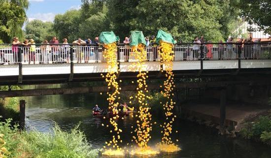 Charity Duck Race  - The ducks get off to a flying start!