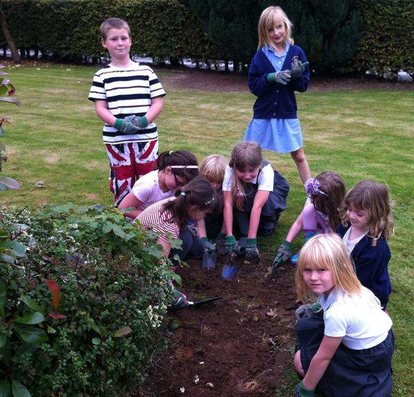Foundation - Crocus planting at one of the Stafford schools last year.