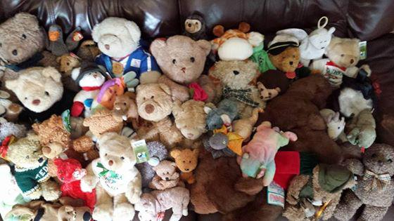 Lions' Aldridge Fair - Help find a home for these orphaned teddies. You can find them at the Rotary Club of Aldridge's Teddy Bears Picnic at the Aldridge Fayre, Anchor Meadow.