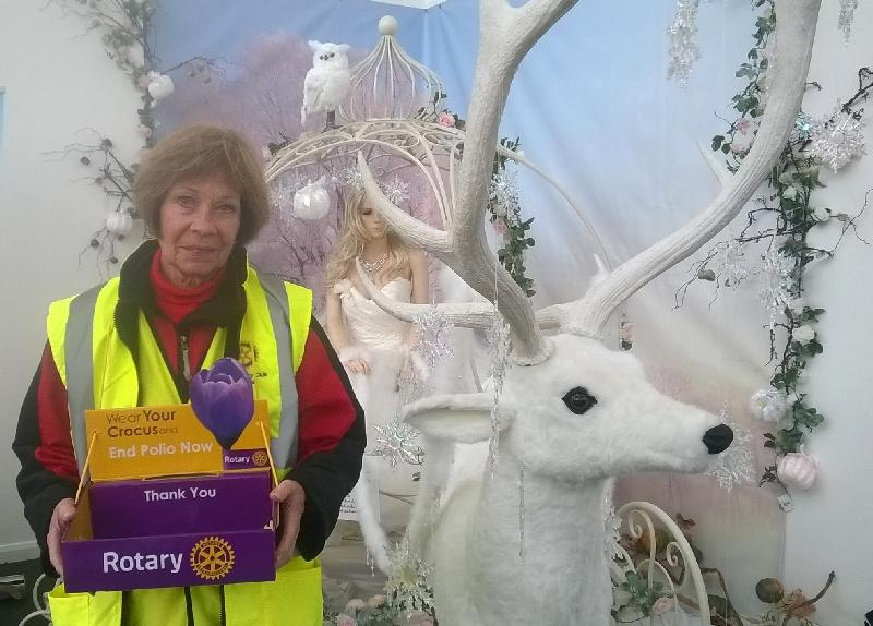 Ryde Rotarian Pauline collecting for World Polio day