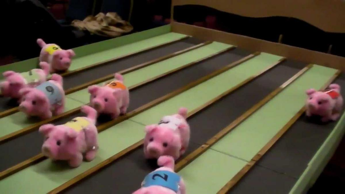 Pig Racing at The Sportsmans Inn -