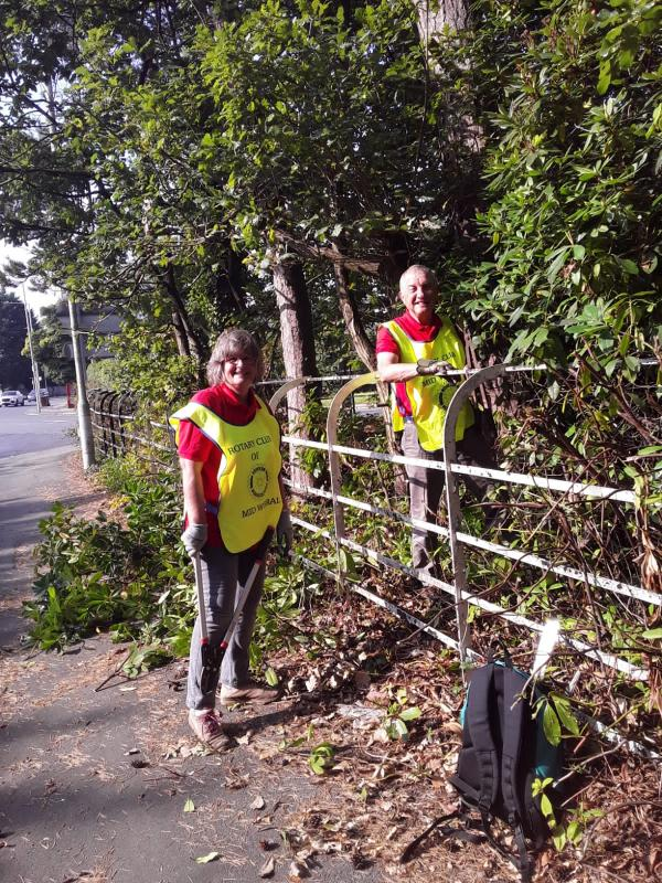 Clearing bushes from railings ready for repainting