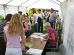 Enthusiastic walkers fill the check-in marquee at Tattenham Corner
