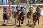 RACE NIGHT IN AID OF 'END POLIO NOW'