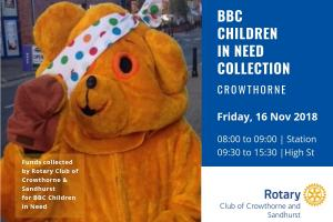 Pudsey Collection in Crowthorne