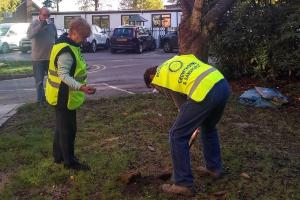 Crowthorne crocus planting marks World Polio Day