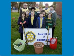 2015 Community Service Bulb Planting - Burlington School