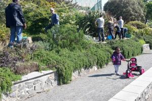 Saffery Champness Delancey Park Spring Clean (7 May 2016)