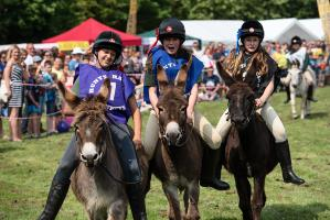 Burnham Donkey Derby 2018