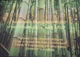 Think Blue Green for Sustainable Urban Infrastructure