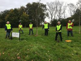 Planting crocuses for World Polio Day, 24th October 2020