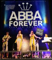 Abba tribute night out