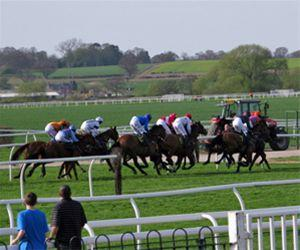 Evening Trip to Bangor Races - Tuesday 19th July