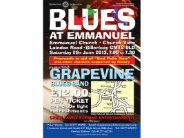 Summer Blues Concert June 2013
