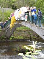 24 May 2014 Duck Race and crepe stall at the Fling by the River