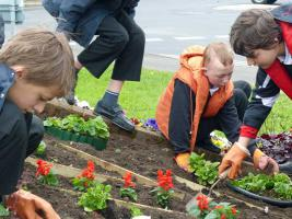 12 June 2013 - Pupils from Stony Dean School get planting