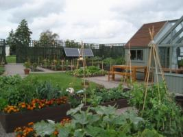 Visit to Brandon Village Community Garden