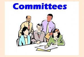 Lunch Meeting - Committees