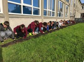 Brora RotaKids plant Crocuses in support of End Polio