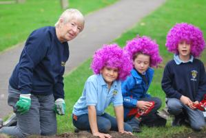 Pat Armstrong of Rotary in Amersham helps pupils from St Mary's School plant 2000 purple Crocuses at St Mary's Churchyard Amersham