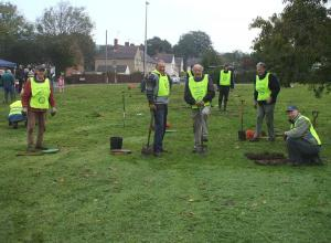 Bulb planting in Nailsea